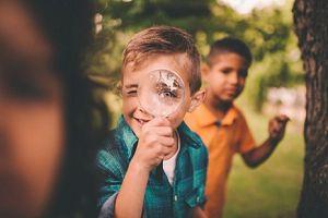 Zeven tips voor een groen schoolplein